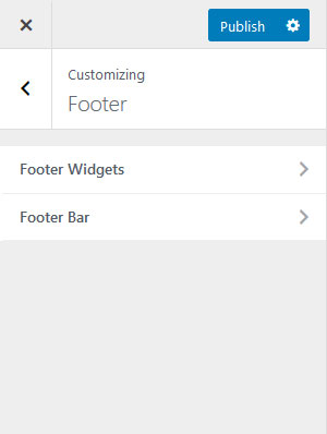 astra-footer-settings
