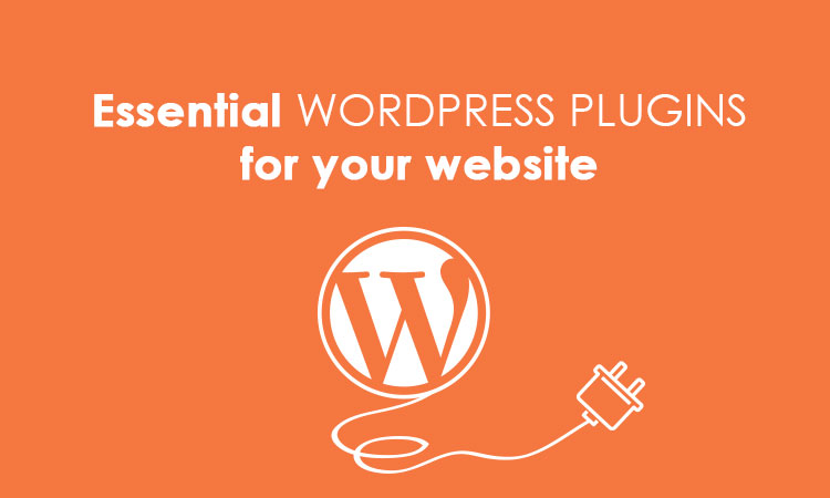 essential wordpress plugins for your website