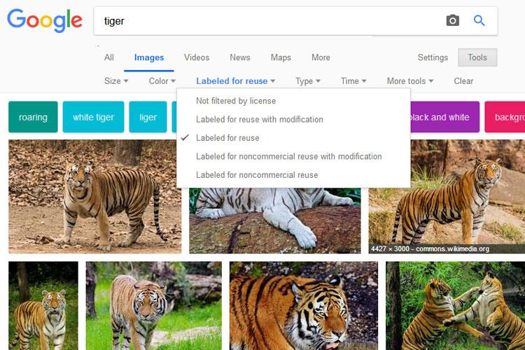 google-image-search-img